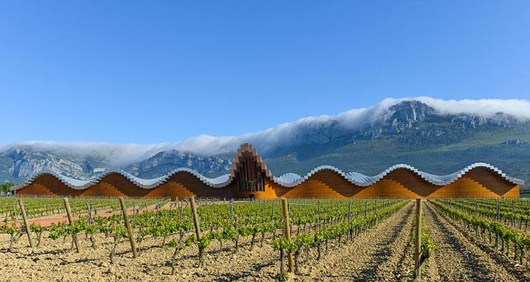 Bodegas Ysios diseñadas por Calatrava